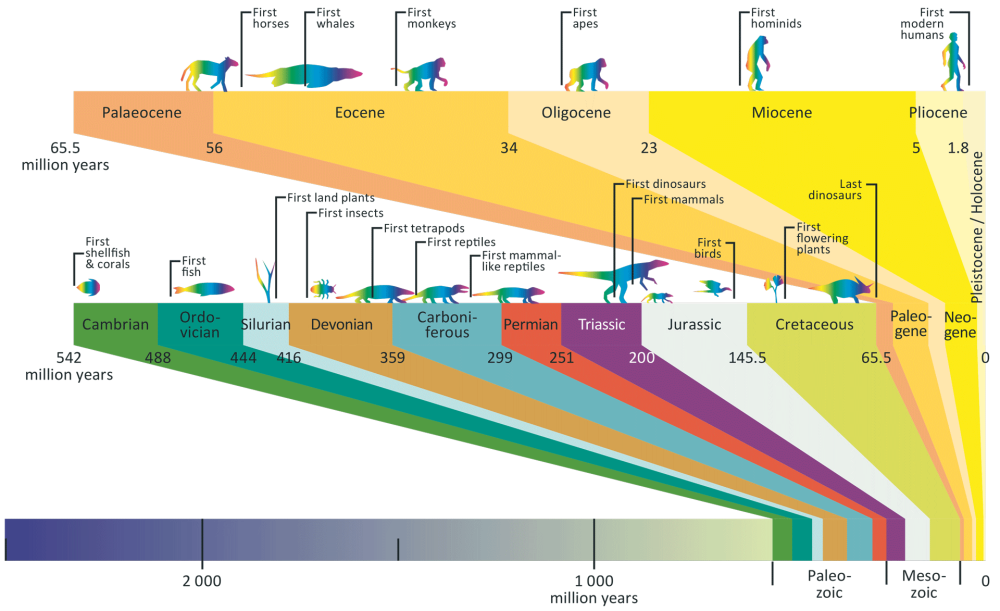 The geological timeline